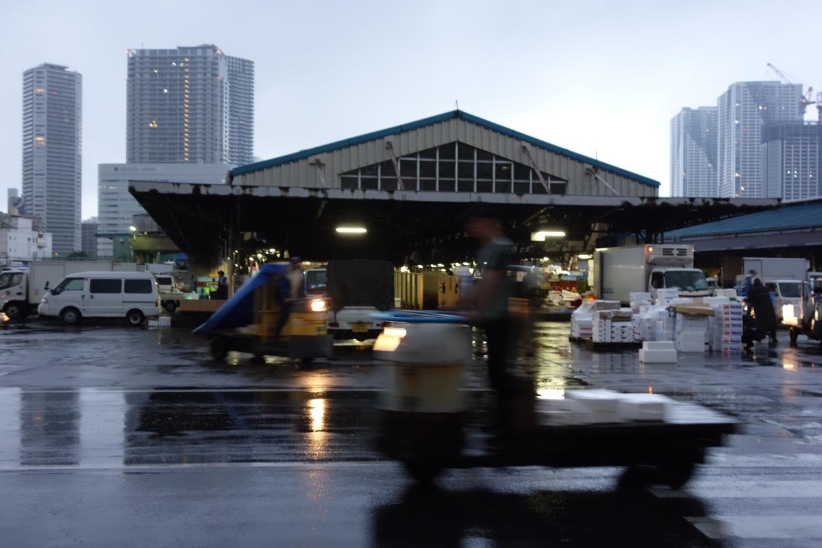 FAQ: visitare lo Tsukiji Market o di come (non) riuscire a vedere l'asta dei tonni